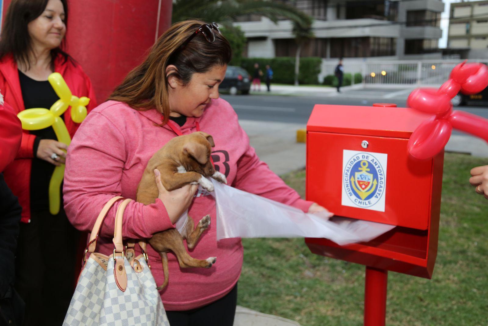 antofagasta-cuenta-con-los-primeros-dispensadores-de-bolsas-de-basura-para-desechos-de-perros